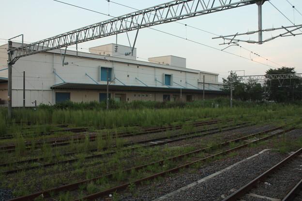 友部駅の線路に雑草が (2)