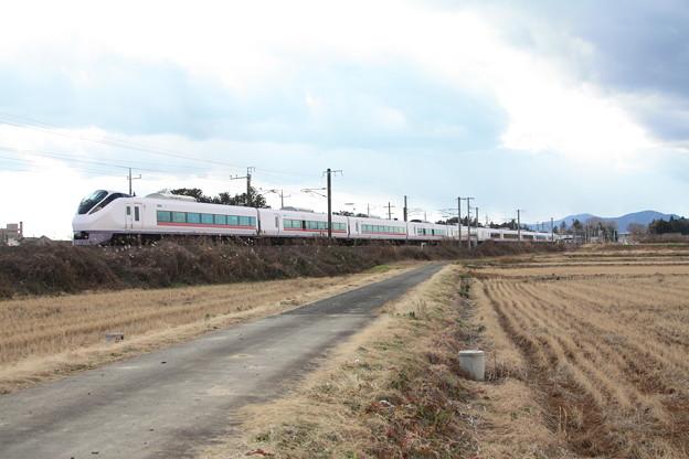 冬の田園風景を行くE657系 (2)