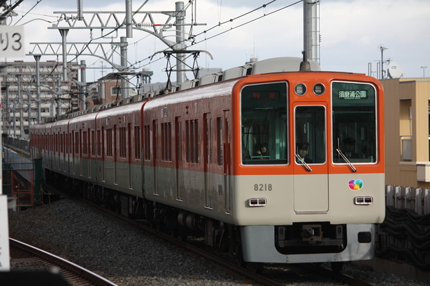 阪神本線 8000系8217F 特急 須磨浦公園 行