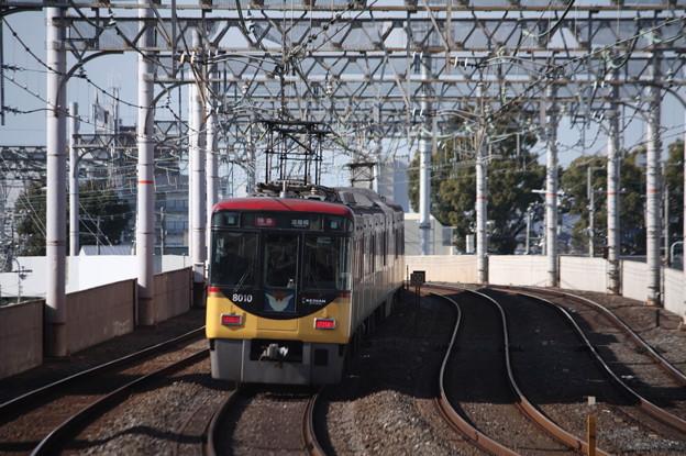 京阪本線 8000系8010F 特急 淀屋橋 行 後追い