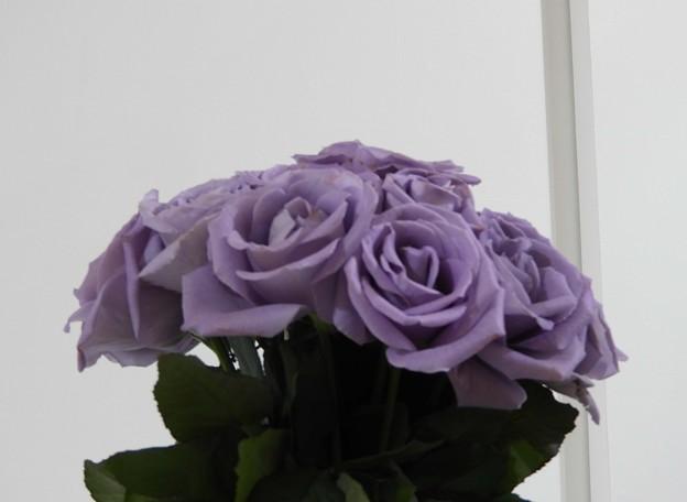 紫の薔薇~