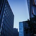 写真: G290721-京橋2