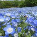 写真: 静寂の青