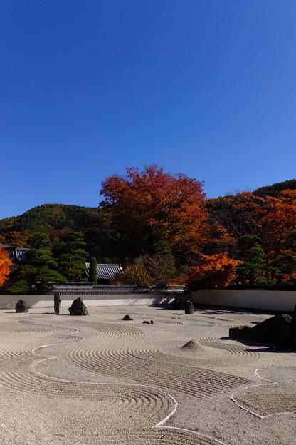 Photos: 日本最大級の広さを誇る枯山水