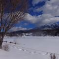 白樺湖も蓼科山も寒々