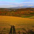 写真: 秋天的丘陵