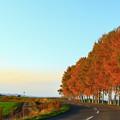 写真: 秋色流轉的公路