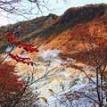 写真: ?泉谷的秋楓
