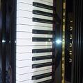 写真: 弾けないピアノを弾くんだぜ。