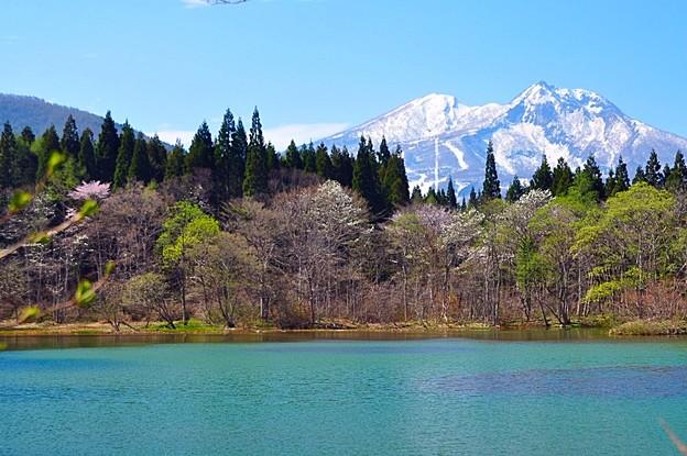 妙高山を望む