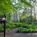 Photos: 最高所の園