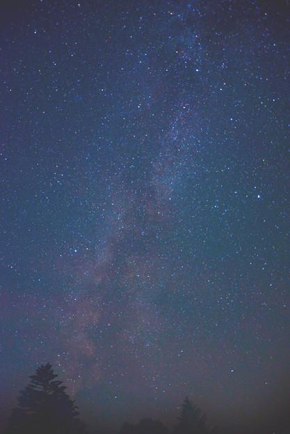 写真: 南西の空の天の川 ガスってきました。