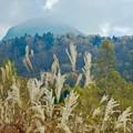 写真: ホタル温泉からの笠ケ岳