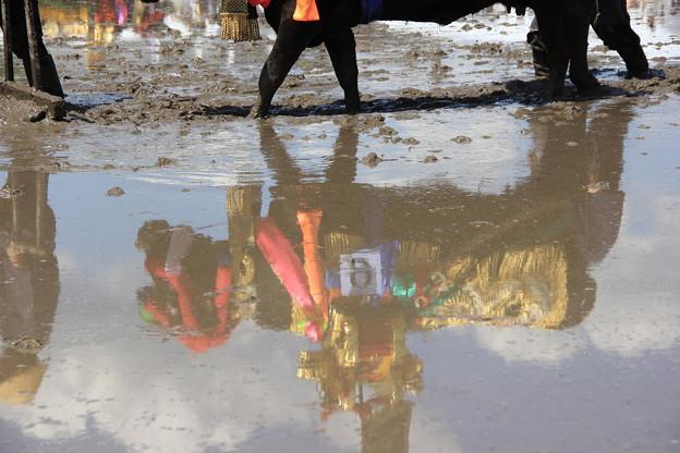 写真: 水鏡
