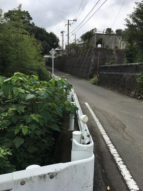 川沿いの細い坂道を・・・