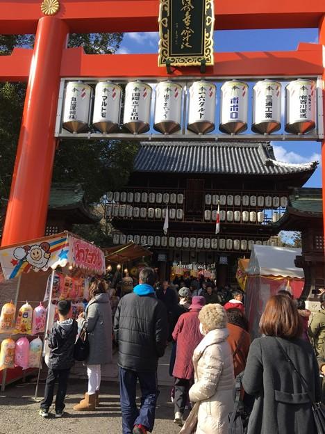 伊予豆比古命神社(椿神社)