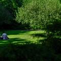写真: 8月の午後・2017/二人の公園