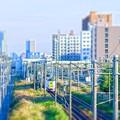 写真: 「電車で午後!」
