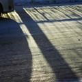 写真: 冬/少しだけ温かい光 4