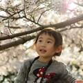 写真: 小春日和