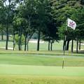 ロイヤルゴルフクラブ-3