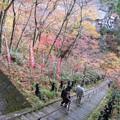 Photos: 参道-2