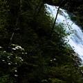 写真: 清水流れる