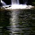 写真: 湖面の光