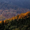 写真: 秋景1