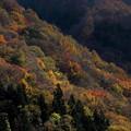 写真: 秋景3