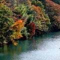 写真: 秋の湖畔