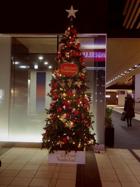 渋谷マークシティ クリスマスワンダーランド