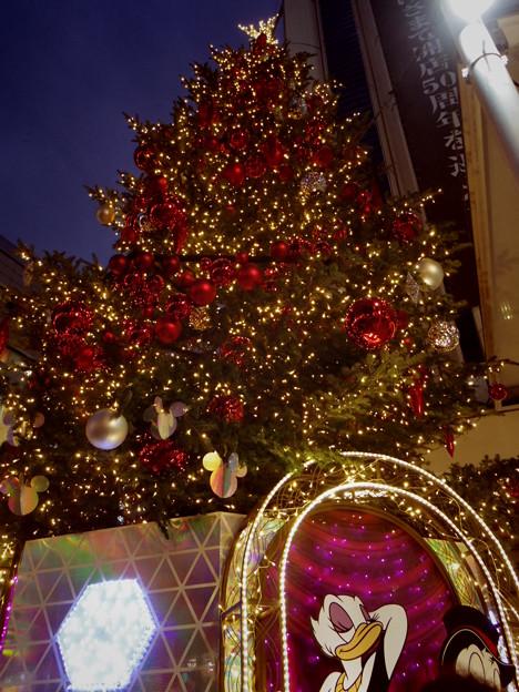 渋谷東急夜1