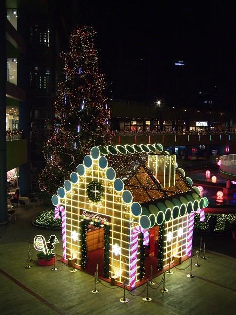 東京ドーム-ツリーとお菓子の家2