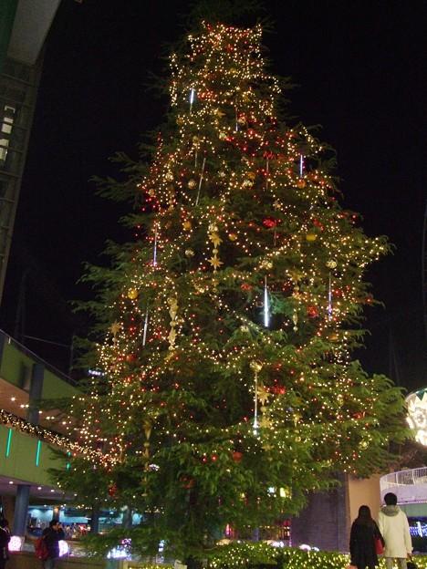東京ドームのツリー