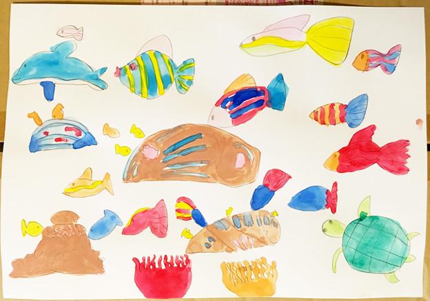貝を描こう