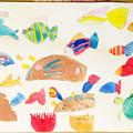 Photos: 貝を描こう