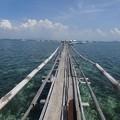 オランゴ島のマリンサンクチュアリ