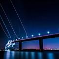 写真: 東京ゲートブリッジ