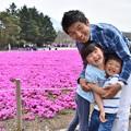 写真: 満開の芝桜♪