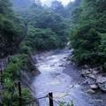 写真: 姥ヶ滝へ(2)