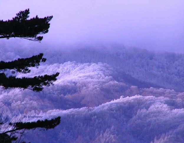 写真: 裏磐梯の雪