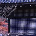 Photos: 勧修寺