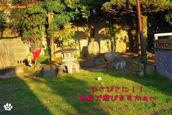 s-myu2009_1125