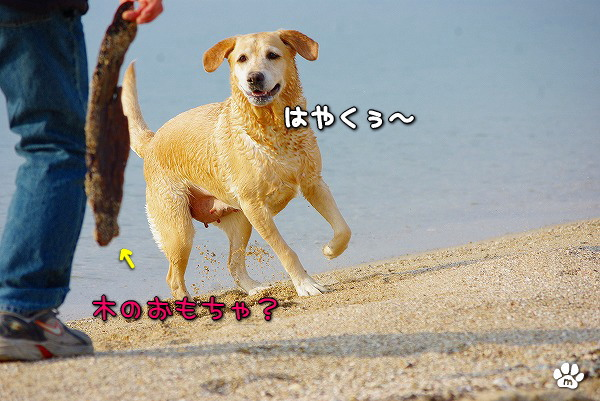 s-myu2009_1230_18