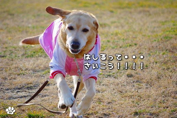 s-myu2009_1230_23