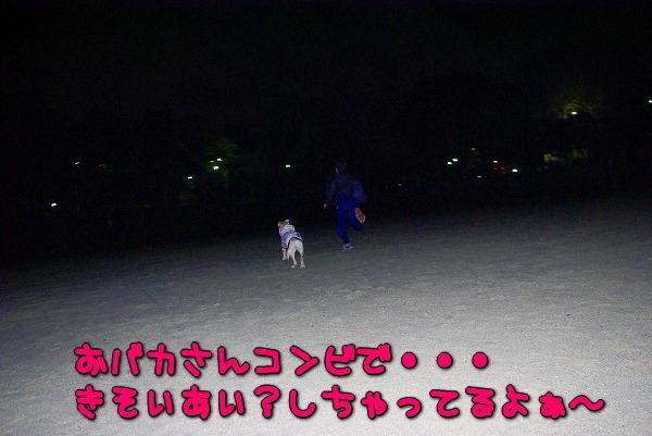 s-myu2010_0128-2
