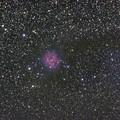 写真: IC5146 まゆ星雲