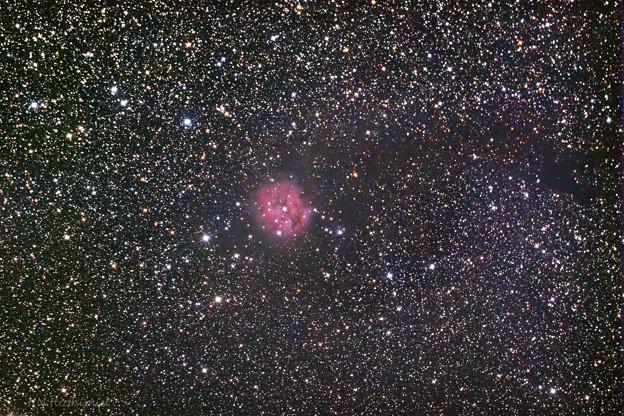 IC5146まゆ星雲 再処理
