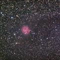 写真: IC5146まゆ星雲 再処理